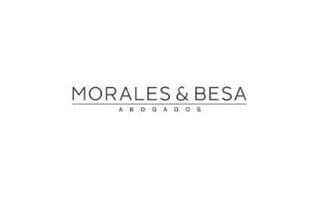 CFI Legal Awards, 2013: Morales & Besa for their Pro Bono Work in Chile