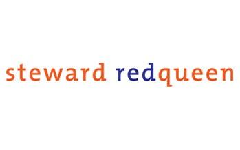 Steward Redqueen: Best Emerging Markets ESG Advisory Team Global 2015