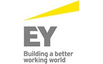 Ernst & Young: Best Tax Team Argentina