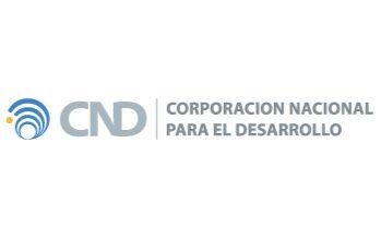 Corporación Nacional de Desarrollo: Best Infrastructure Development Partner Latin America 2019