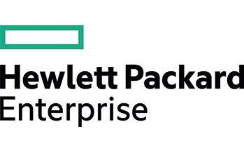 Hewlett Packard Enterprises: Best Governance Team US 2021