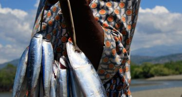 NEPAD: Boosting Africa's Most Valuable Renewable Natural Assets – Fish