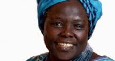 Wangari Maathai: Attaining Peace that Endures, One Tree at a Time