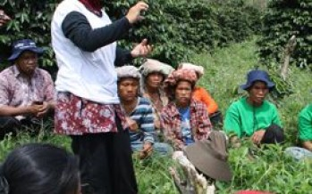 IFC, ECOM Training Helps Women Farmers Boost Income, Productivity