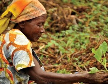 Copyright: MDG-F / Sustainable Development Goals Fund