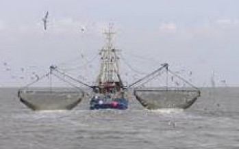 Fishing for a Sustainable and Equitable Future in the Pacific