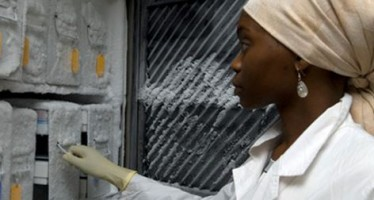African Governments Invest in Skills in Sciences, Engineering, and Technology