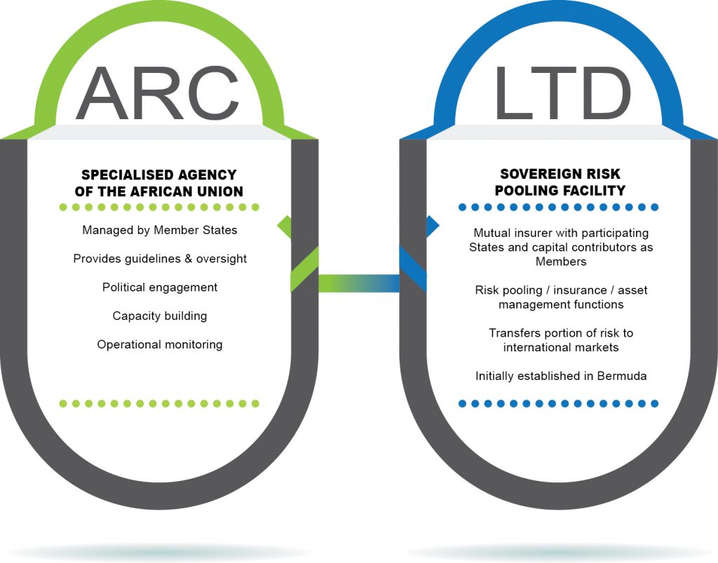 AGENCY & LTD (1) ARC