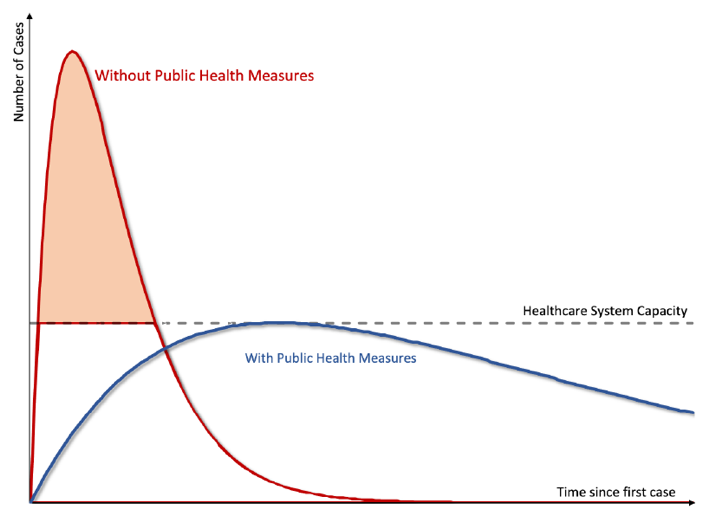 Figure 1: Flattening the Pandemic Curve. Source: Gourrinchas (2020)