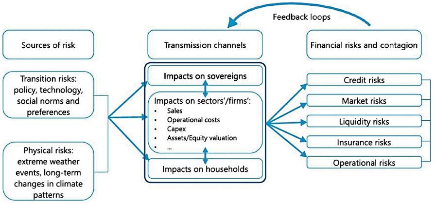 Chart 3: Channels and spillovers for materialisation of physical and transition. Source: Source: Bolton et al,  The green swan - central banking and financial stability in the age of climate change, BIS, Jan. 2020