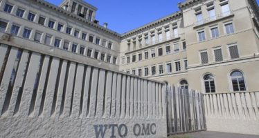 WTO: World trade volume rallies in third quarter after COVID-19 shock
