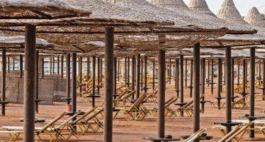 IMF Blogs: Tourism Trauma and COVID-19