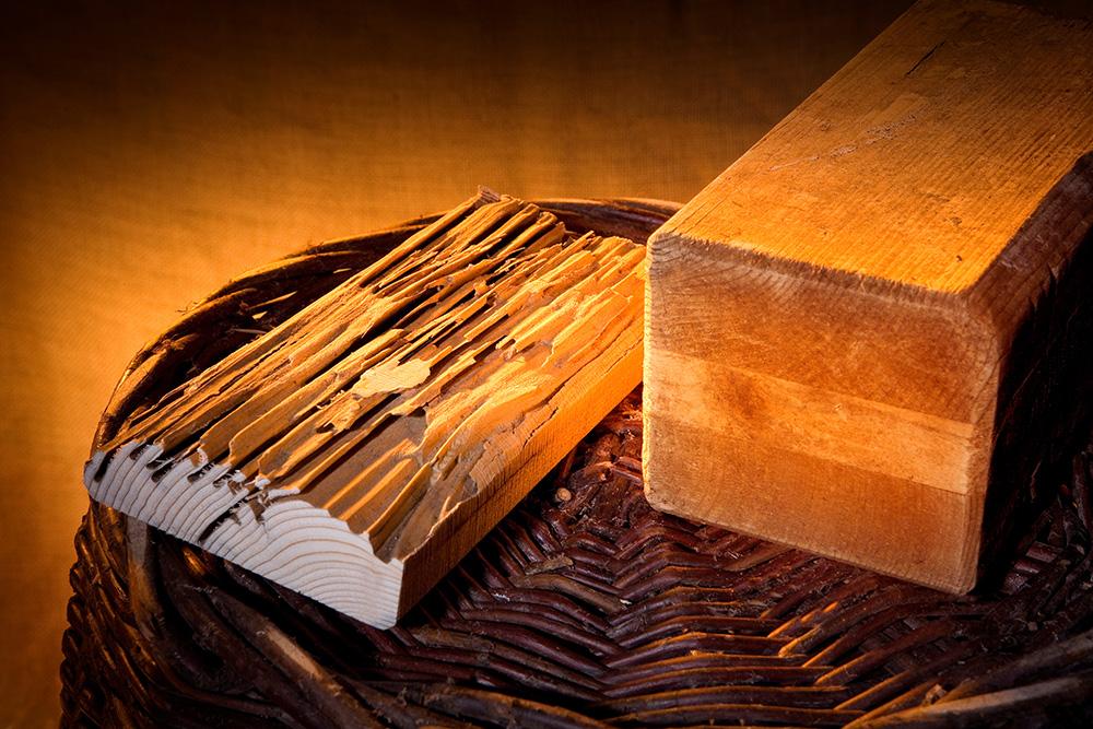 Nanopool Wood Protect Termites