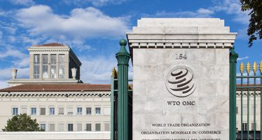 WTO: Trade shows signs of rebound from COVID-19, recovery still uncertain