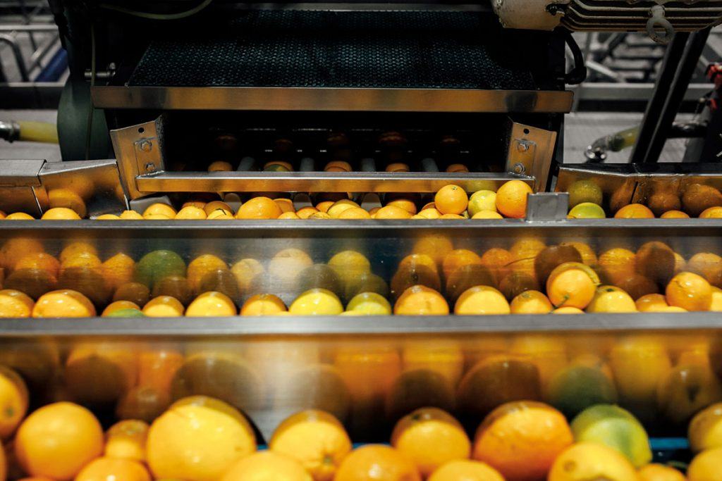 State-of-the-art AMC Natural Drinks squeezing site for Mediterranean fruits