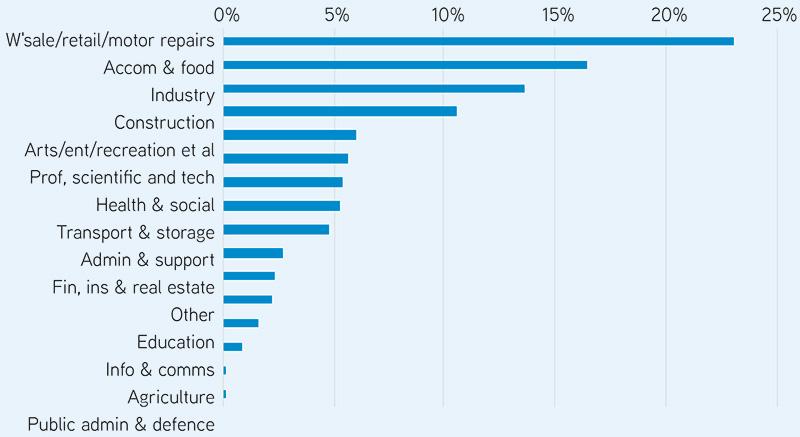Figure 2: Percent of TWSS recipients (Percent of total recipients between 12 March & 31 August, 2020). Source: CSO