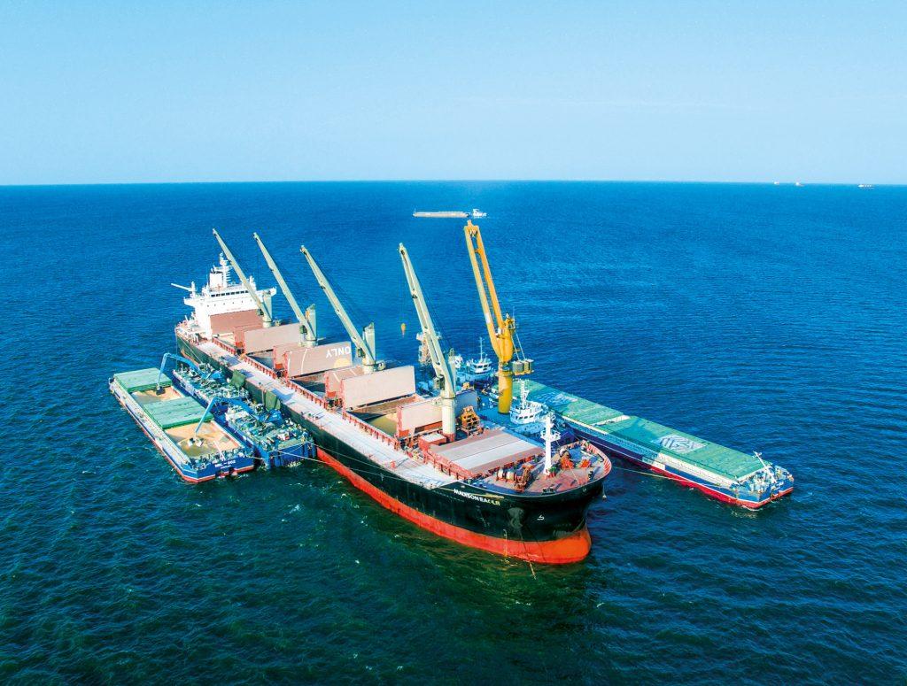 NIBULON's cargo fleet