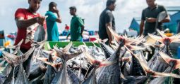 Asian Development Bank: Towards a Blue Deal to Restore the World's Oceans