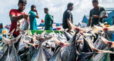 Asian Development Bank: Towards a Blue Deal to Restore the World's Oceans